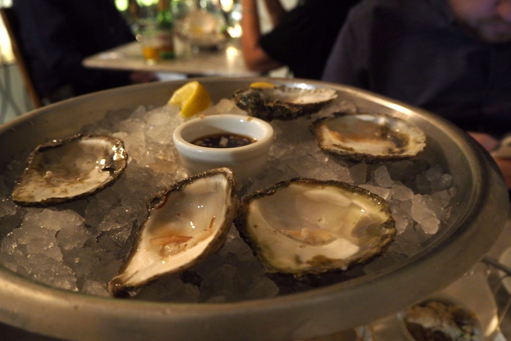Oysters close up